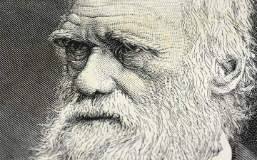 Detail of a portrait of Charles Darwin with selective focus on the eyes.